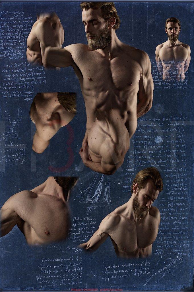 Planches anatomiques - Léonard de Vinci