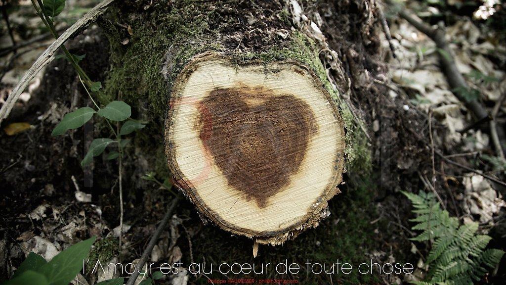 l'Amour est au cœur de toute chose :