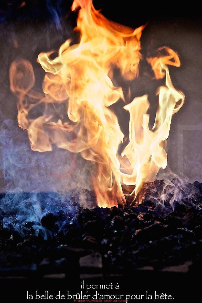 il permet à la belle de brûler d'amour pour la bête.